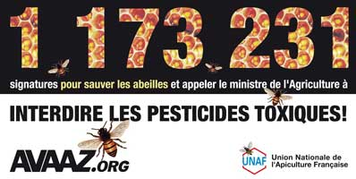 AVAAZ.org - 1,173,231 Signatures to Save the Bees